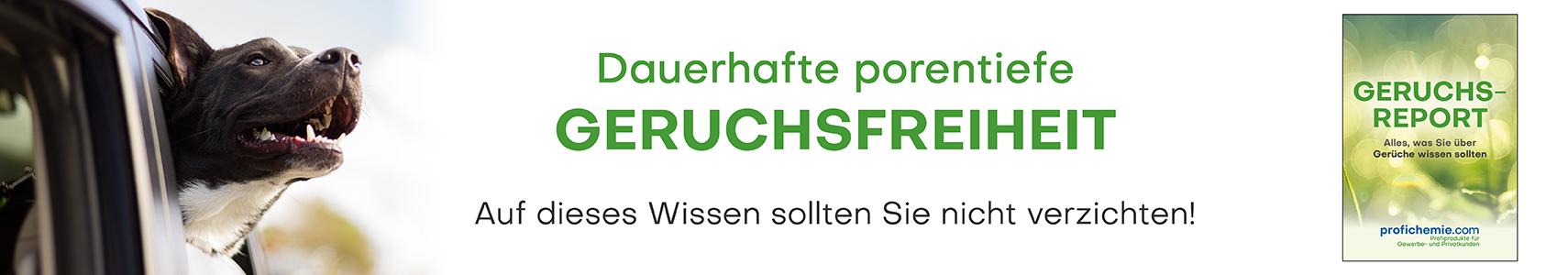Geruchsreport Banner - Gratis sichern!
