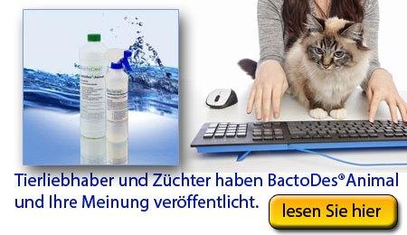 BactoDes Kundenmeinungen