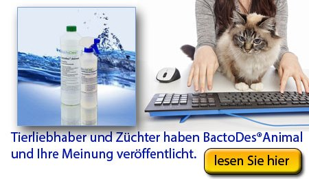 BactoDes Testaktion